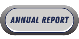 Link to the Annual Report